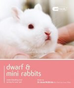 Dwarf & Mini Rabbits.
