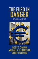 The Euro in Danger