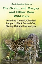 An introduction to The Ocelot and Margay and Other Rare Wild Cats Including Caracal, Clouded Leopard, Black Footed Cat, Fishing Cat and Iberian Lynx