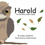 Harold, the Owl Who Couldn't Sleep