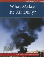 What Makes the Air Dirty?
