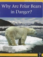Why Are Polar Bears in Danger?