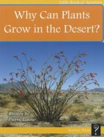 Why Can Plants Grow in the Desert?