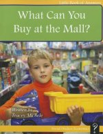 What Can You Buy at the Mall?