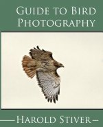 Guide to Photographing Birds