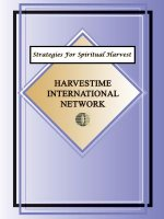 Strategies for the Spiritual