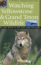 Watching Yellowstone & Grand Teton Wildlife