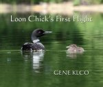 Loon Chick's First Flight