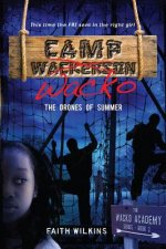 Camp Wacko: The Drones of Summer