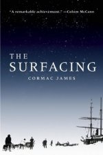 The Surfacing