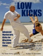 Low Kicks: Advanced Martial Arts Kicks for Attacking the Lower Gates
