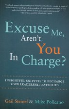 Excuse Me, Aren't You in Charge?: Insightful Snippets to Recharge Your Leadership Batteries