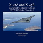 X-47 Unmanned Combat Air Vehicle (Ucav)