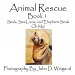 Animal Rescue, Book 1, Seals, Sea Lions And Elephant Seals, Oh My!