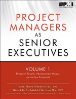 Project Managers as Senior Executives: Volume 1: Research Results, Advancement Model, and Action