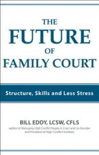 The Future of Family Court: Skills Structure and Less Stress