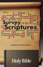 A Survey of the Scriptures