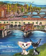 Let's Visit Florence!: Adventures of Bella & Harry