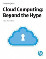 Cloud Computing: Beyond the Hype