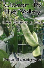 Closer to the Valley: Like Peas in a Pod