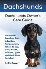 Dachshunds: Dachshund Breeding, Diet, Adoption, Temperament, Where to Buy, Cost, Health, Lifespan, Types, and Much More Included!