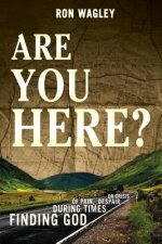 Are You Here?: Finding God During Times of Pain, Despair or Crisis