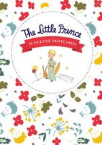 The Little Prince: A Portfolio: 24 Plates