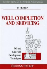 Well Completion and Servicing: Oil and Gas Field Development Techniques