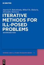 Iterative Methods for Ill-Posed Problems