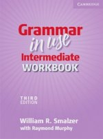 Grammar in Use - Third Edition. Intermediate Workbook