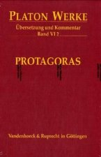 VI,2 Protagoras