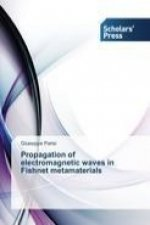Propagation of electromagnetic waves in Fishnet metamaterials