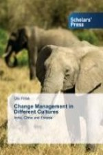 Change Management in Different Cultures
