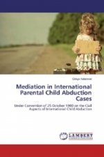 Mediation in International Parental Child Abduction Cases