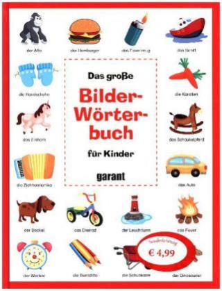 Das große Bilderwörterbuch für Kinder