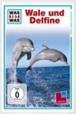 Was ist Was TV. Wale und Delphine / Wales and Dolphins. DVD-Video