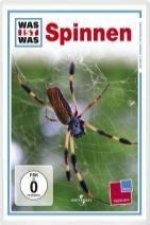 Was ist Was TV. Spinnen / Spiders. DVD-Video