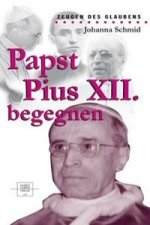 Papst Pius XII. begegnen
