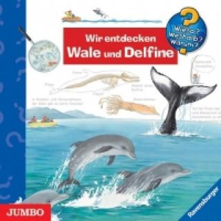 Wieso? Weshalb? Warum? Wir entdecken Wale und Delfine