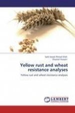 Yellow rust and wheat resistance analyses