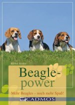 Beaglepower