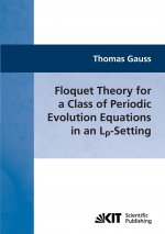 Floquet Theory for a Class of Periodic Evolution Equations in an Lp-Setting