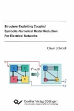 Structure-Exploiting Coupled Symbolic-Numerical Model Reduction For Electrical Networks