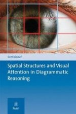Spatial Structures and Visual Attention in Diagrammatic Reasoning