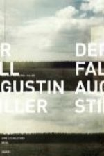 Der Fall Augustin Stiller