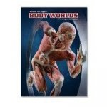 Body Worlds. The Original Exhibition (Ausstellungskatalog Dänisch)
