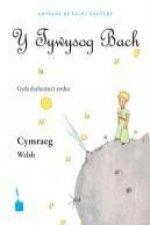 Y Tywysog Bach. Cymraeg