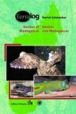 Geckos Madagaskars der Seychellen, Komoren und Maskarenen / Geckos of Madagascar, the Seychelles, Comoros and Mascarene Islands
