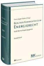 Berliner Kommentar zum Energierecht, Band 5