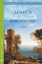 Briefe an Lucilius / Epistulae morales (Deutsch)